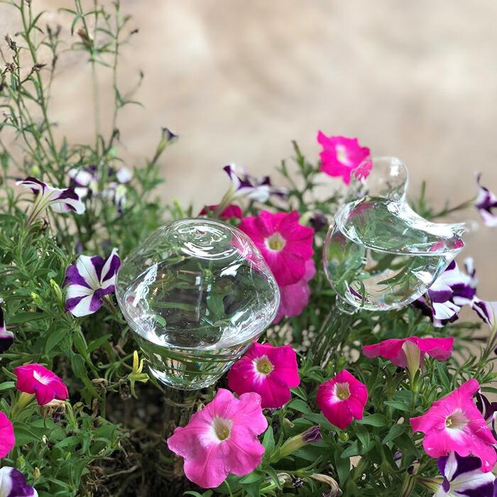 OLIVIA ウォータリンググラス バード15
