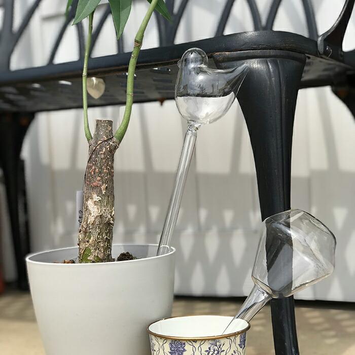 OLIVIA ウォータリンググラス バード04