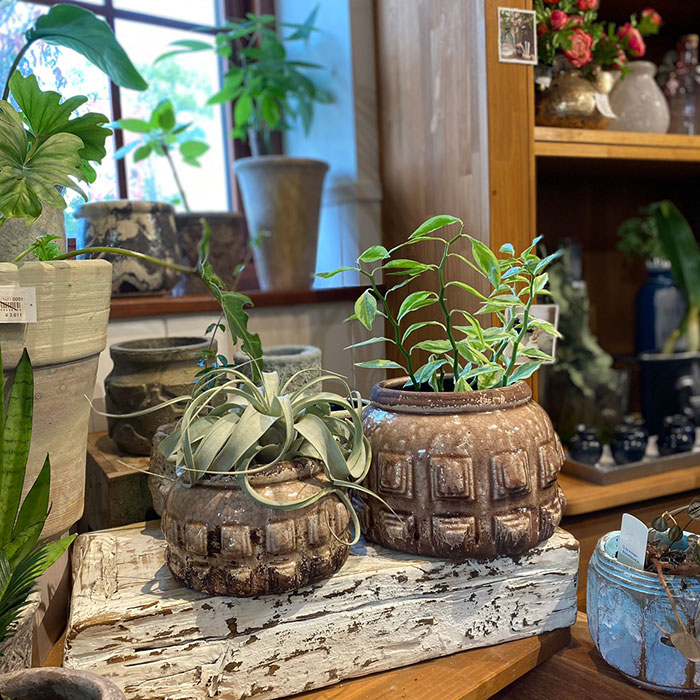 LIVY 鉢カバー Sサイズ ピンク 陶器  観葉植物 アンティーク調07