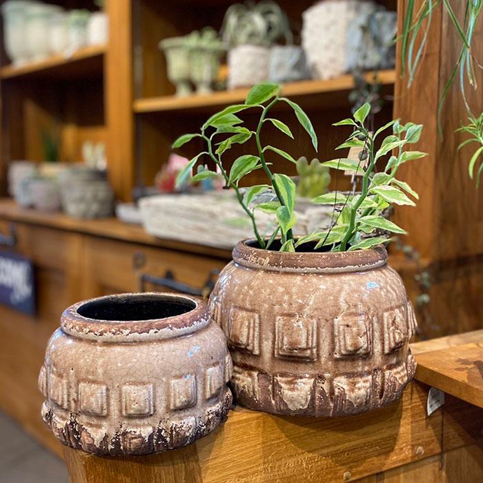 LIVY 鉢カバー Lサイズ ピンク 陶器  観葉植物 アンティーク調10