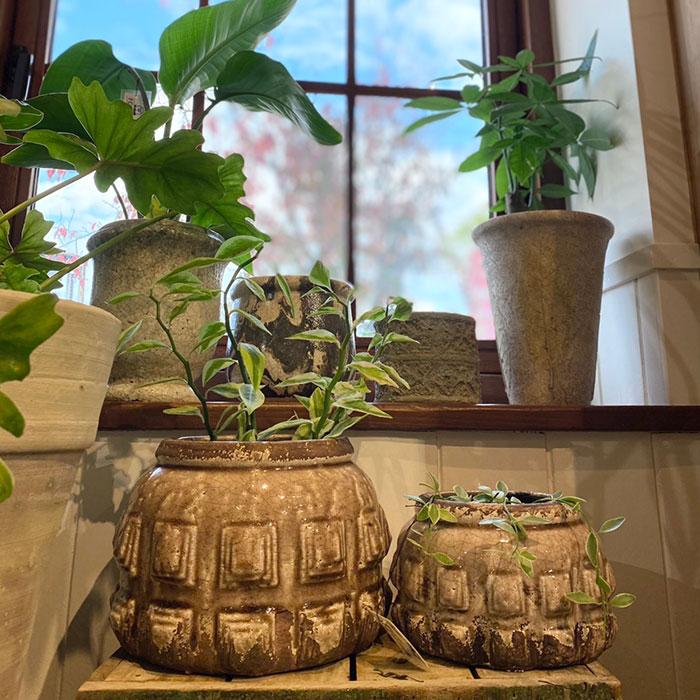 LIVY 鉢カバー Lサイズ ピンク 陶器  観葉植物 アンティーク調05