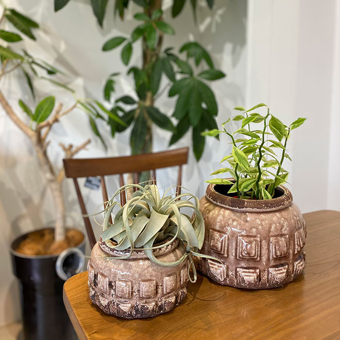 LIVY 鉢カバー Lサイズ ピンク 陶器  観葉植物 アンティーク調07