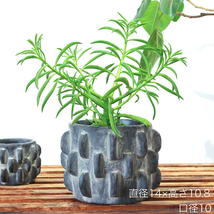 DOR 鉢カバー Sサイズ ダークグレー セメント  鉢カバー 観葉植物 シック