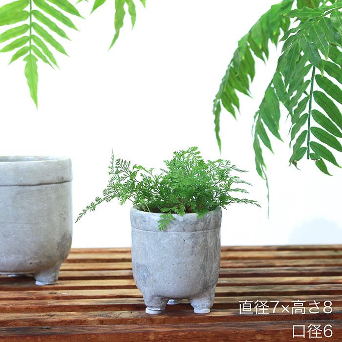 CREアシ 鉢カバー XSサイズ グレー 陶器  鉢カバー 観葉植物 足つき