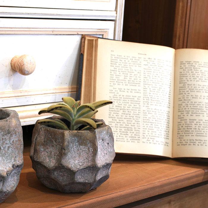 TODD 鉢カバー Sサイズ ゴールド セメント  鉢カバー 観葉植物07