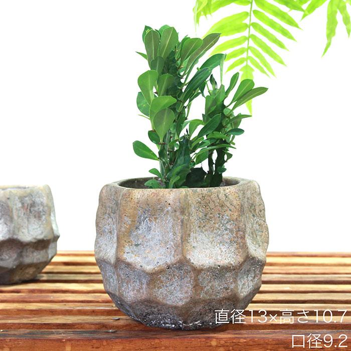 TODD 鉢カバー Mサイズ ゴールド セメント  鉢カバー 観葉植物