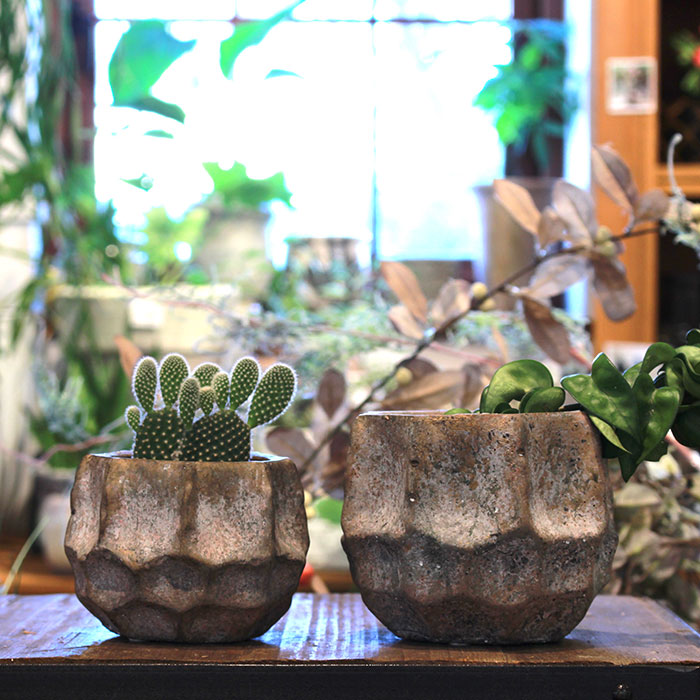 TODD 鉢カバー Mサイズ ゴールド セメント  鉢カバー 観葉植物 10