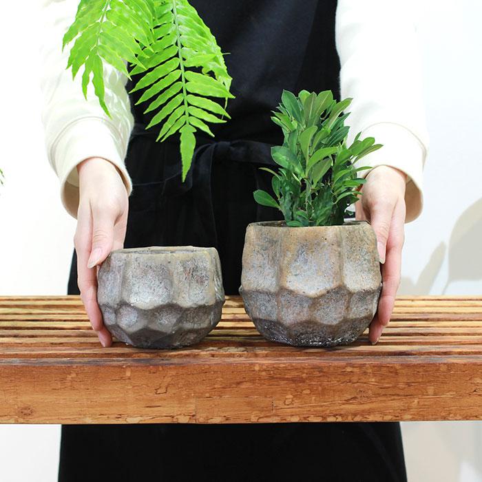 TODD 鉢カバー Mサイズ ゴールド セメント  鉢カバー 観葉植物 02