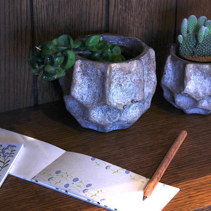 TODD 鉢カバー Mサイズ ゴールド セメント  鉢カバー 観葉植物 09