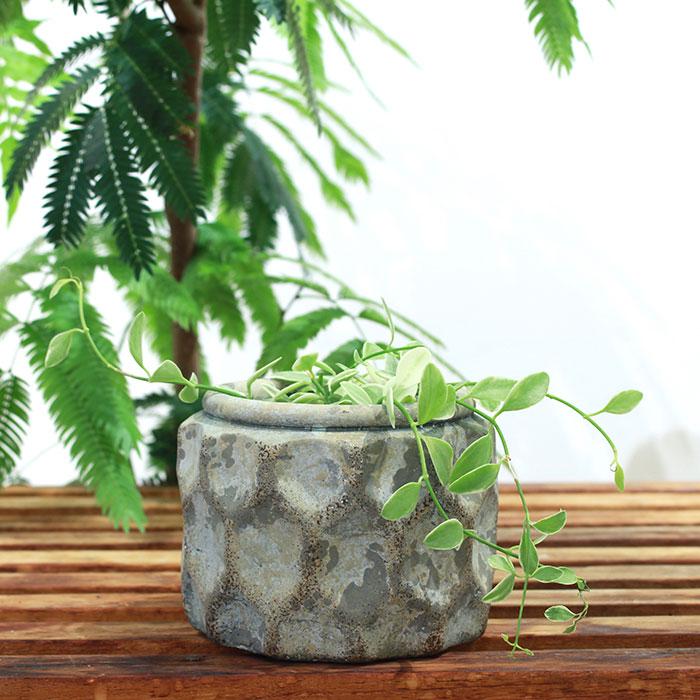 CARIOS 鉢カバー Sサイズ ブラウン セメント  鉢カバー 観葉植物05