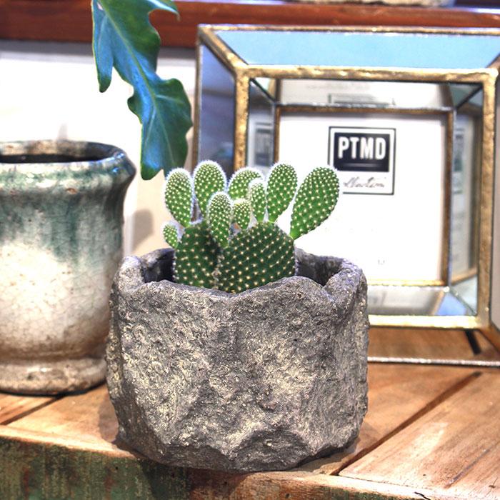 SCAR 鉢カバー XSサイズ グレー セメント  鉢カバー 観葉植物11