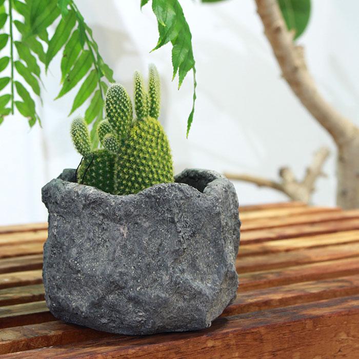 SCAR 鉢カバー XSサイズ グレー セメント  鉢カバー 観葉植物02
