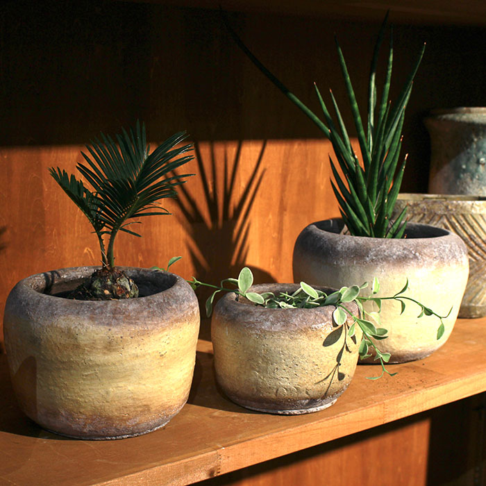 ALY 鉢カバー Lサイズ イエロー 陶器  鉢カバー 観葉植物  06