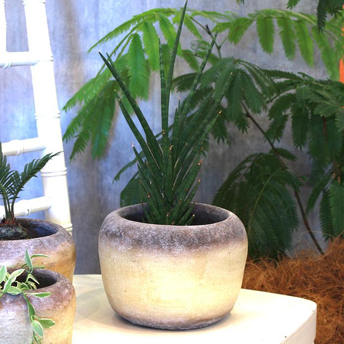 ALY 鉢カバー Lサイズ イエロー 陶器  鉢カバー 観葉植物  07