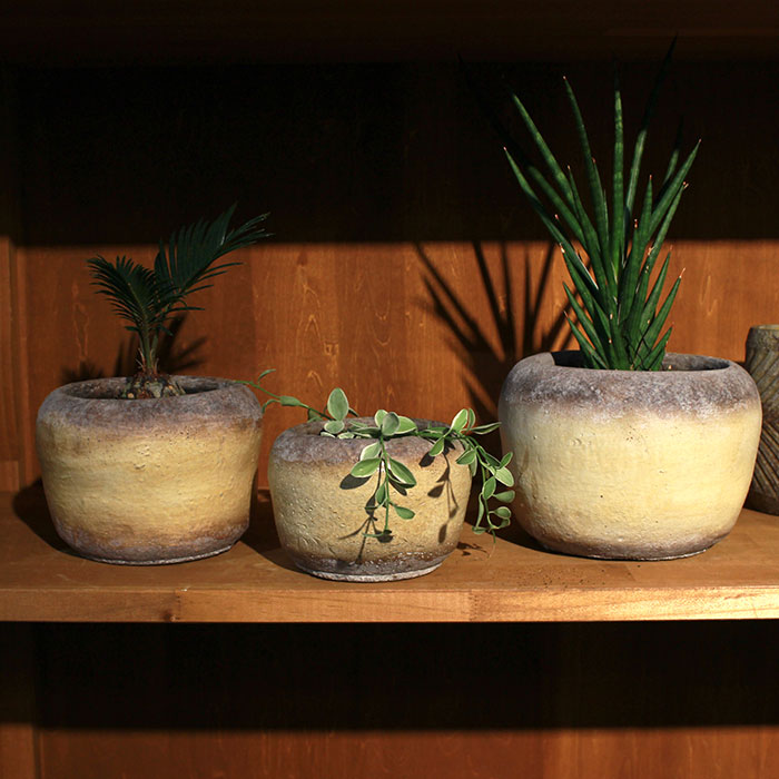 ALY 鉢カバー Mサイズ イエロー 陶器  鉢カバー 観葉植物05