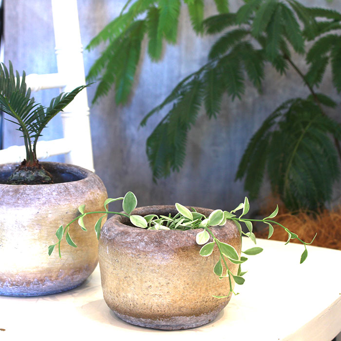 ALY 鉢カバー Sサイズ イエロー 陶器  鉢カバー 観葉植物07