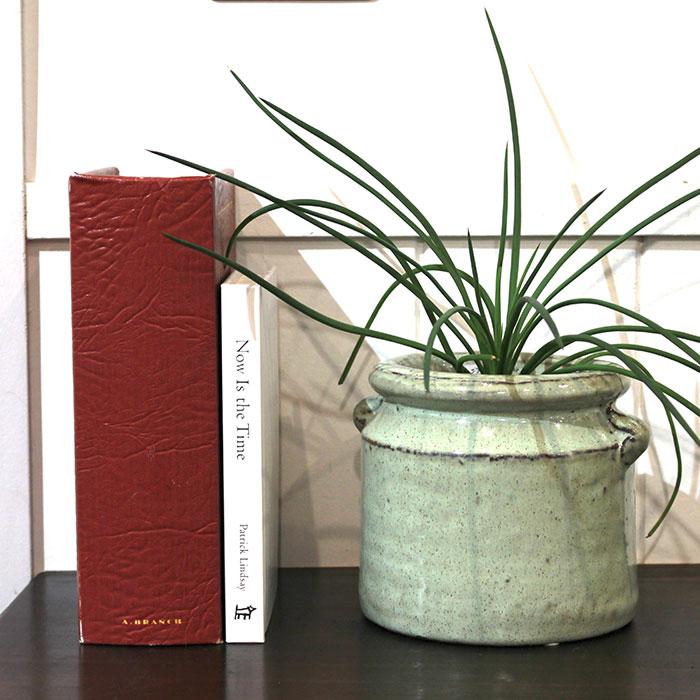 NEV 鉢カバー Mサイズ グリーン 陶器  鉢カバー 観葉植物 アンティーク調13