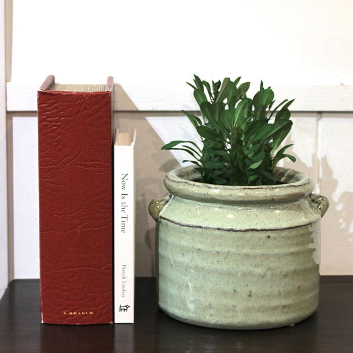 NEV 鉢カバー Lサイズ グリーン 陶器  鉢カバー 観葉植物 アンティーク調13