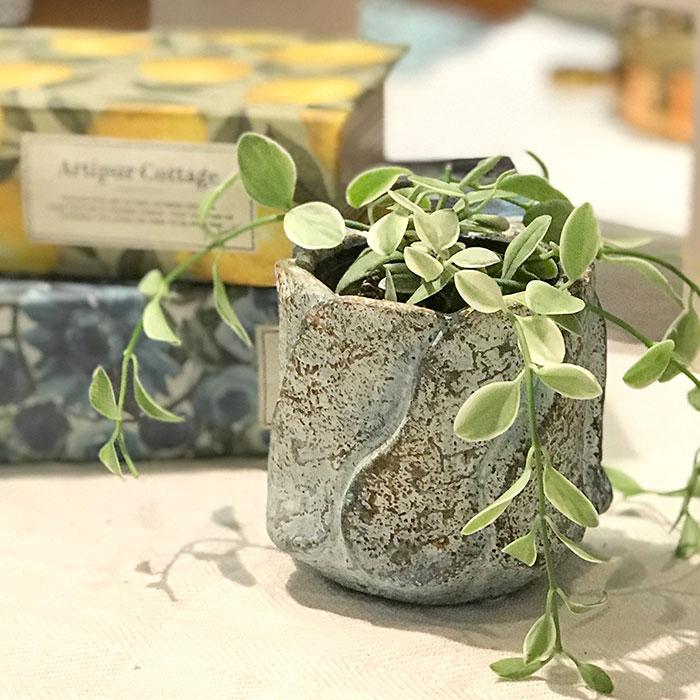 DEC BLUE 鉢カバー XSサイズ セメント  鉢カバー 観葉植物07