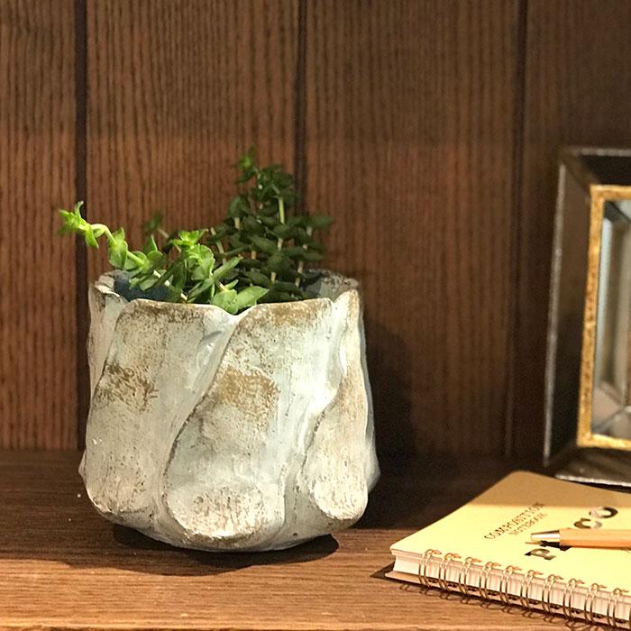 DEC BLUE  鉢カバー Mサイズ  セメント  鉢カバー 観葉植物05
