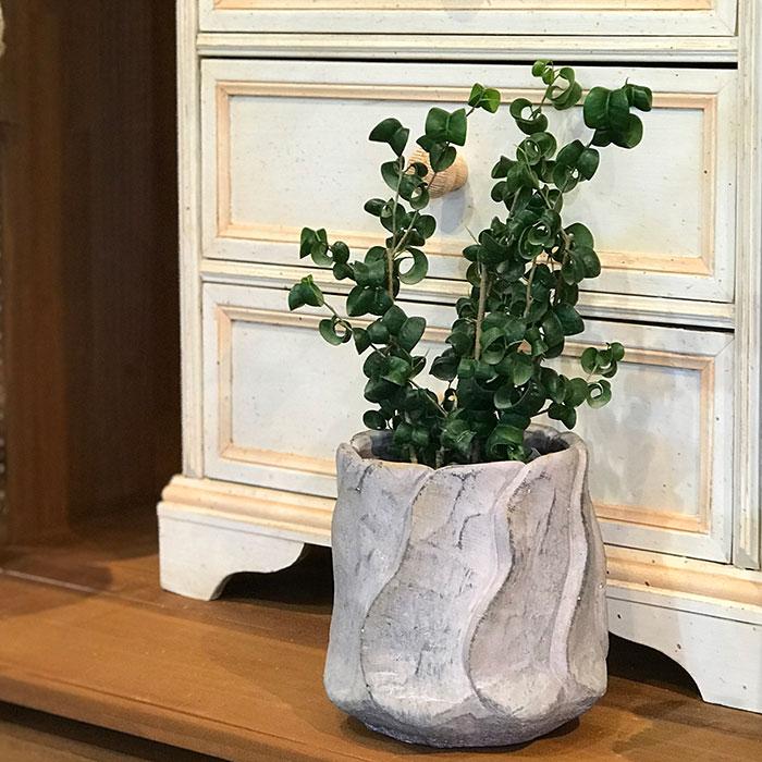 DEC PINK  鉢カバー Lサイズ PINK セメント ラウンド型  鉢カバー 観葉植物11