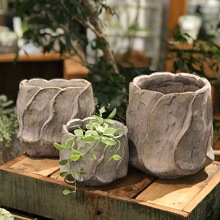 DEC PINK  鉢カバー Lサイズ PINK セメント ラウンド型  鉢カバー 観葉植物07