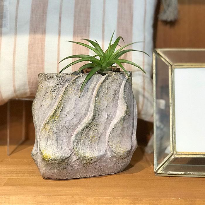 DEC PINK 鉢カバー Sサイズ オーバル型 セメント  鉢カバー 観葉植物10