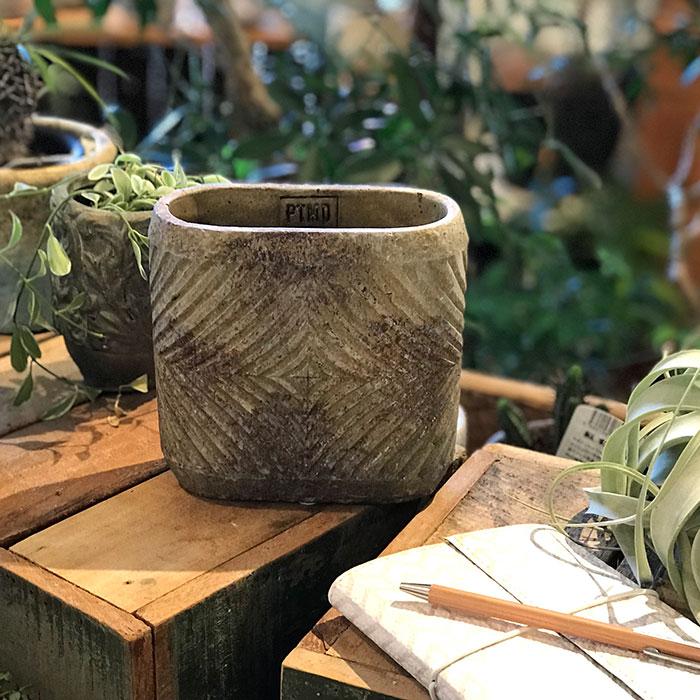 LAW 鉢カバー Sサイズ オーバル型 セメント オレンジ  鉢カバー 観葉植物10
