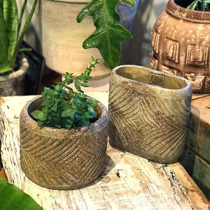 LAW 鉢カバー Sサイズ オーバル型 セメント オレンジ  鉢カバー 観葉植物13