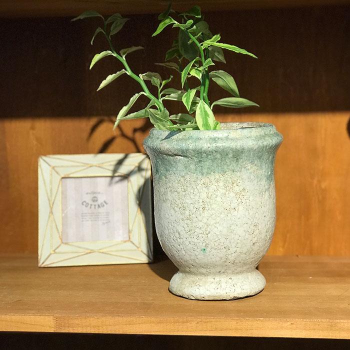 MELS 鉢カバー XSサイズ  陶器 鉢カバー 観葉植物06