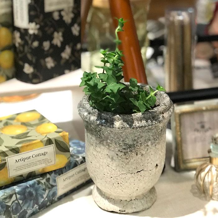 MELS 鉢カバー XSサイズ  陶器 鉢カバー 観葉植物07