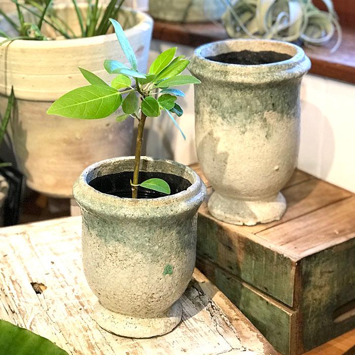 MELS 鉢カバー Sサイズ  陶器  鉢カバー 観葉植物  09